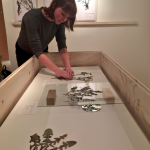 Imke van Boekhold - herbarium