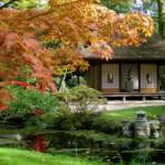 Japanse Tuin - tuinevents
