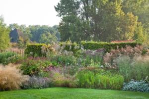 Tuin van de maand oktober NTS