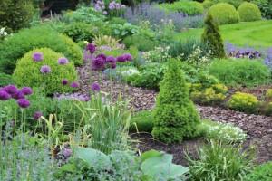 Plantenborder met sierschors