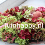 Tuinhappy.nl - hortensia krans maken 005