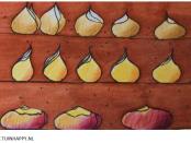 Bloembollen lasagne stappenplan