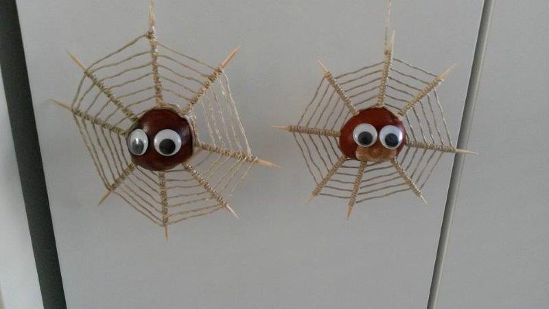 Margriet Biesheuvel - kastanjespinnen