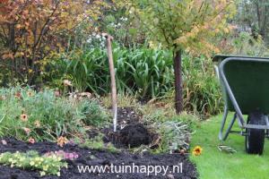 Tuinhappy.nl - bloembollen
