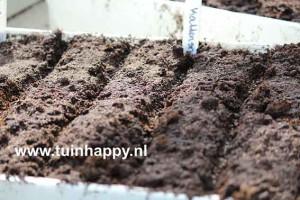 Tuinhappy.nl - kattensnorren