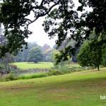 Tuinen van Meise - park - tuinevents