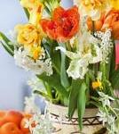 mix van bloembollen op pot