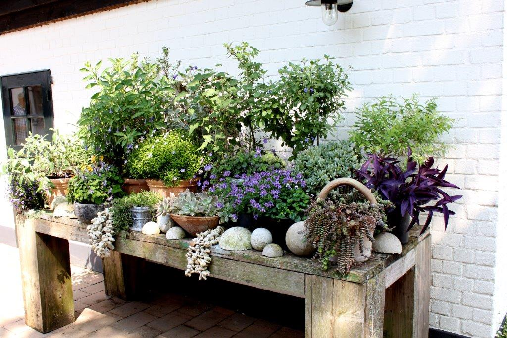 Tuintafel met diverse potten