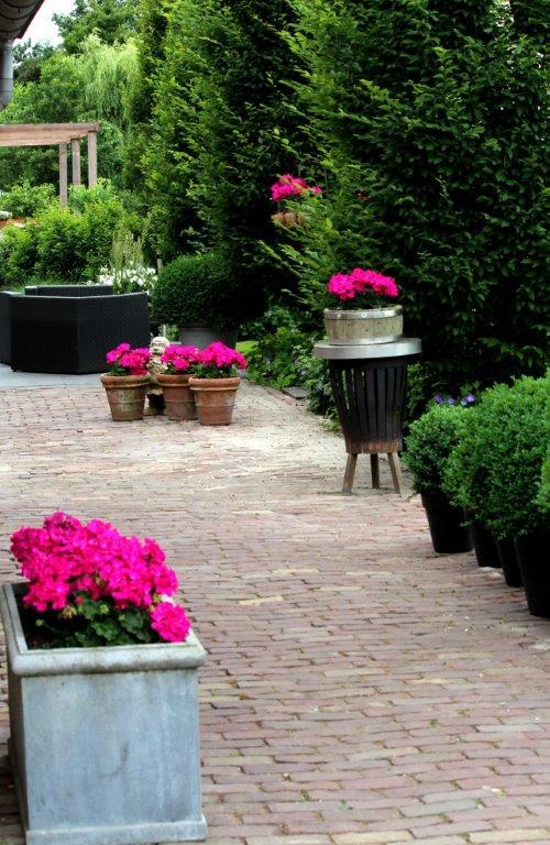 Strakke tuin met accenten