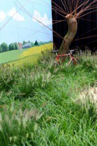 Joop's fiets in het Groene Hart