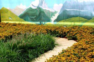Bergen en gele Rudbeckia in de Joop Zoetemelk tuin