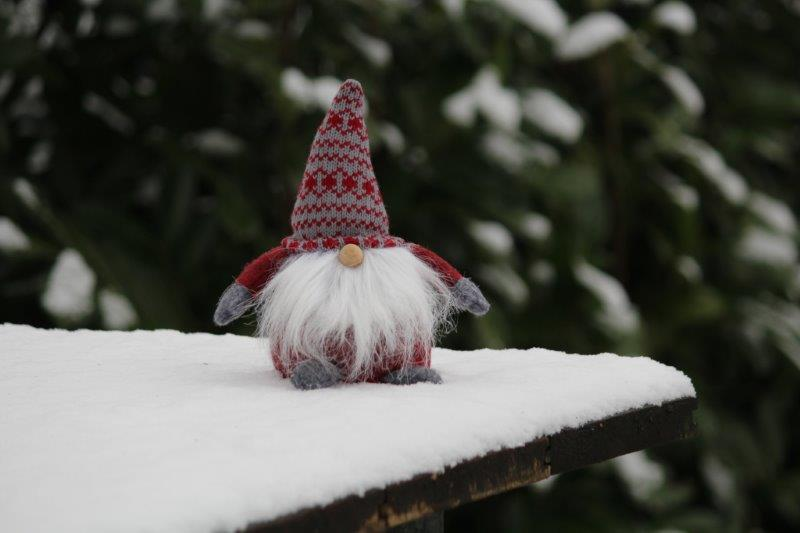 TuinHappy.nl - Sir Wichtel in de sneeuw