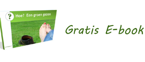 Gratis E-book Hoe Groen Gazon