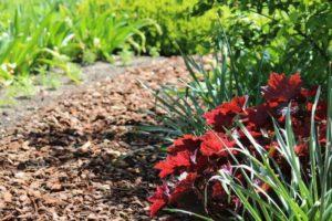 Boomschors in watervriendelijke tuin