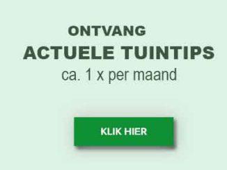 Actuele tuintips