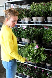 Corina toont plant voor aflevering