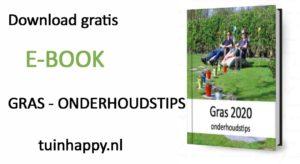 E-book gras