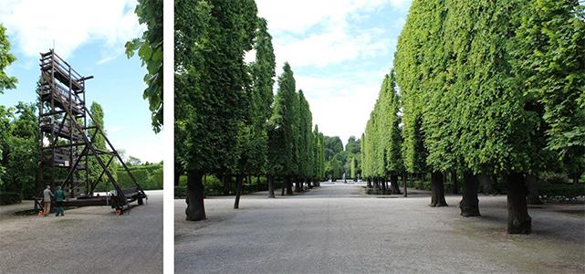 Snoeien Schonbrunn Wenen
