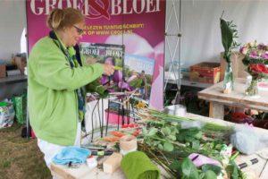 Gardenista - workshops