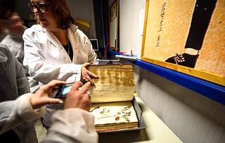 Tuinhappy.nl - En Tibi Herbarium - Naturalis