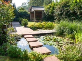 Voorbeeld tuinontwerp met water