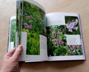 Handboek Bloeiende Tuin Claus Dalby