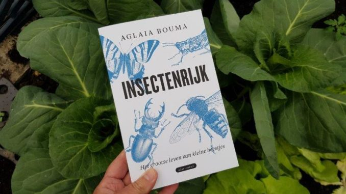 Insectenrijk van Aglaia Bouma