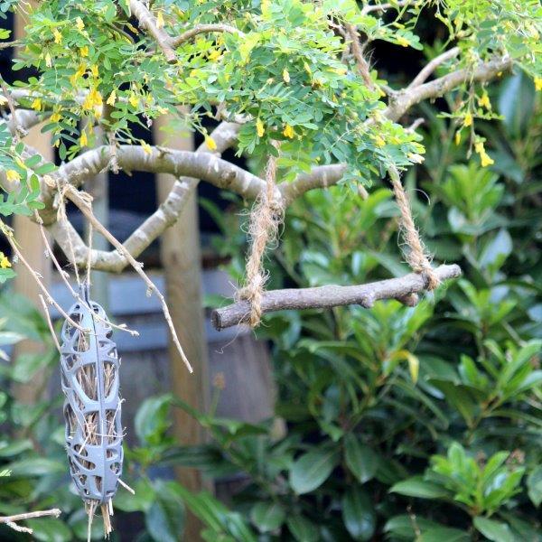 Een vogeltuin met schommel
