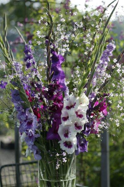Gemengde gladiolen in vaas
