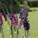 Gladiolen in vaasjes in de tuin