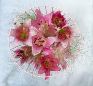 3 kleuren roze Lelies