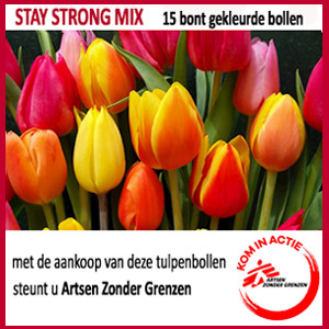 Stay Strong Mix - 15 bont gekleurde bollen
