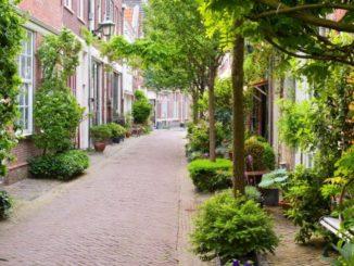 Groene voortuin groene straat