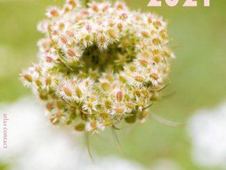 Tuinscheurkalender 2021