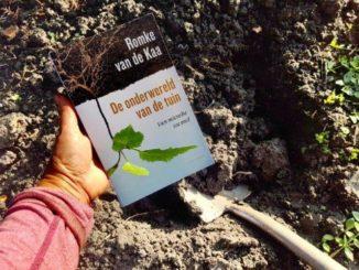 De onderwereld van de tuin - Romke v.d. Kaa