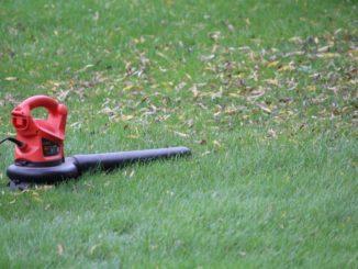 Gazontip - blad op gras - bladeren gazon