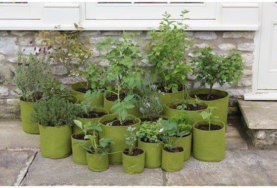 Vigoroot plantzakken - onderdeel van je tuinplannen