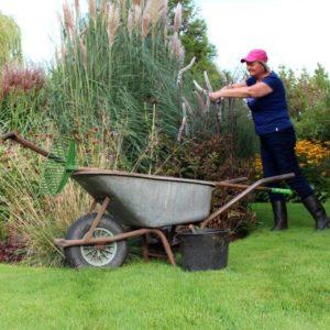 Tuinieren kruiwagen gras siergrassen emmer schoffel