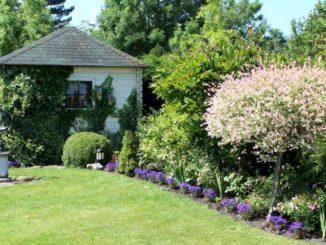 Tuinhuis in groene tuin - tuinblogger - tuinhappy