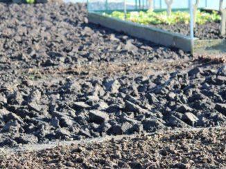 Tuin spitten of juist niet