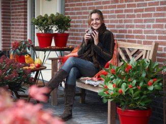 Tuinbankje in de voortuin met potten