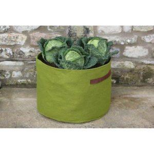 Mini moestuin in plantzak van 28 liter