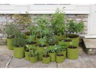 Vigoroot plantzakken