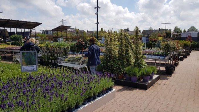 Tuincentrum De Bosrand Oegstgeest
