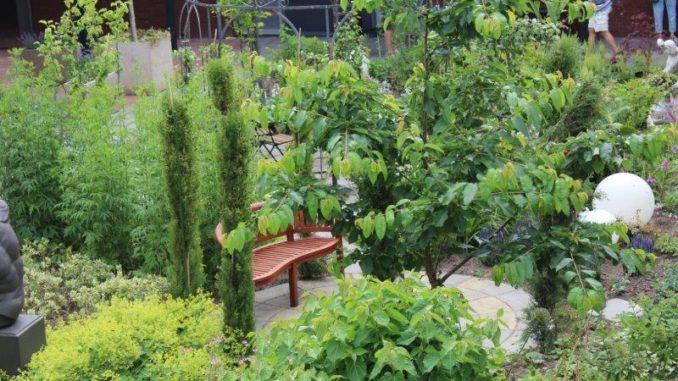 Groene tuin met organische vormen