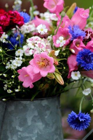 Plukboeket met korenbloemen campanula, gipskruid en duizendschonen